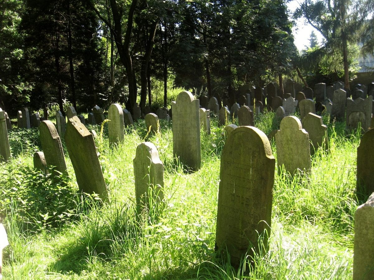 Jewish Cemetery in Poland, July 2011