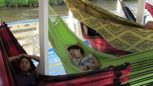 Volunteers in hammocks