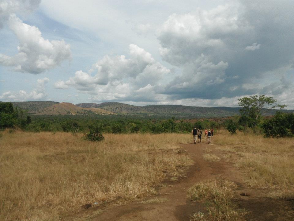 Tanzania landscape