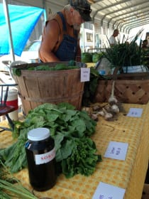 A farmer at the Williamson Farmers Market