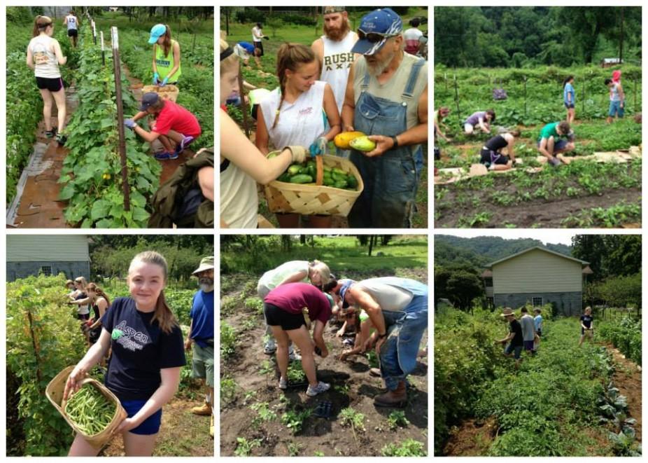 Amizade volunteers serve on Doug Dudley's farm in Williamson, WV