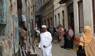 Amizade in Tanzania: The Bustling Streets of Stone Town