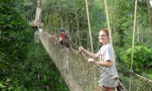 Walking in the Canopy of Kakum National Park
