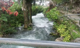 IUP in Jamaica: Roaring Rivers and Summer Camp