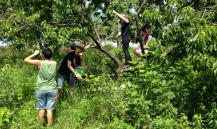 Service-Learning in Appalachia with First Parish Youth: Part 2